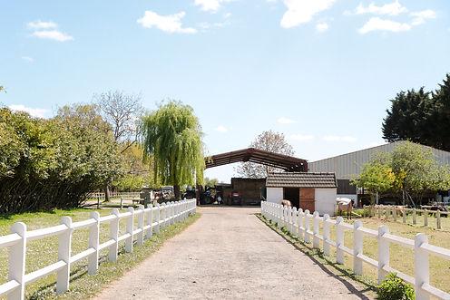 Ryan's farm (150).jpg