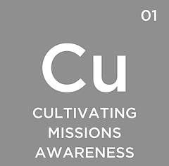 01 - Cultivating Missions Awareness.png