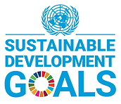 DG logo with UN Emblem_Square_Web.png