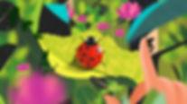 Bug_1_01132.jpg