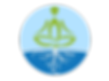 Hydroponics India