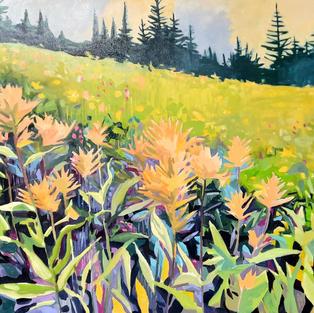Summer Indian Paintbrush 20 x 30 oil on canvas $1150