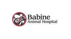 Babine Animal Hospital