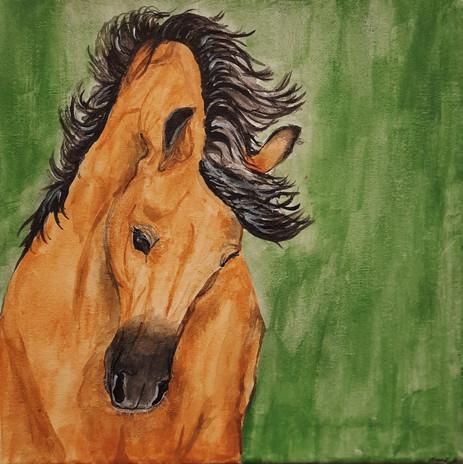 "Brooke Schley 'The Buckskin' 12"" x 12"" acrylic on canvas"