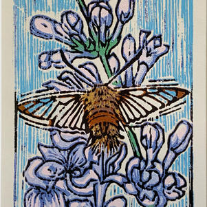 """Moth & Lilac 5"""" x 8"""" Wood Bloc Relief Reduction 8/10 $350"""