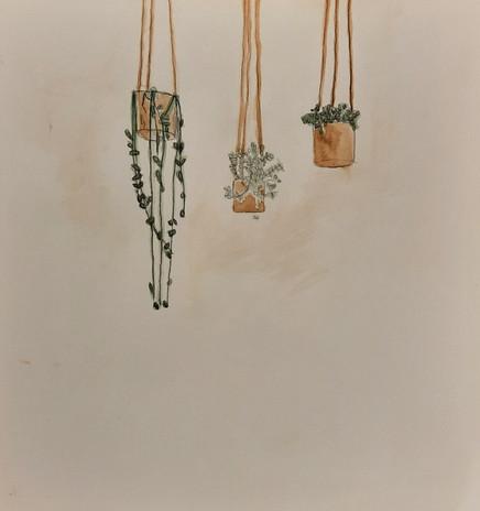 "Navi Macknak 'Hanging Plants 2' 10"" x 10.5"""