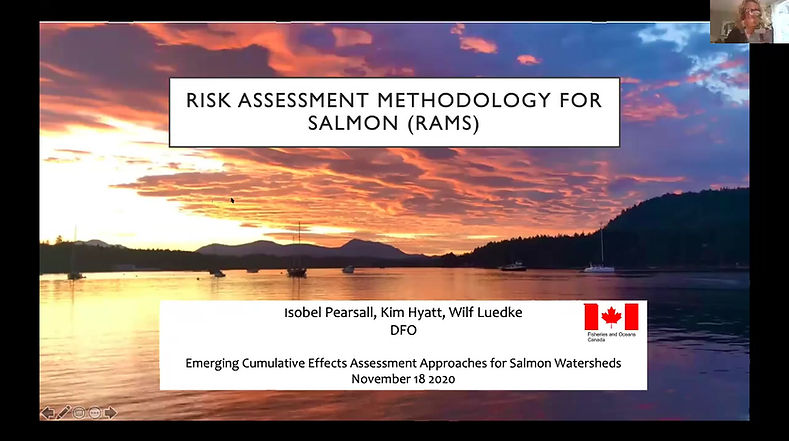 Watershed Assessment and the BC Cumulative Effects Framework