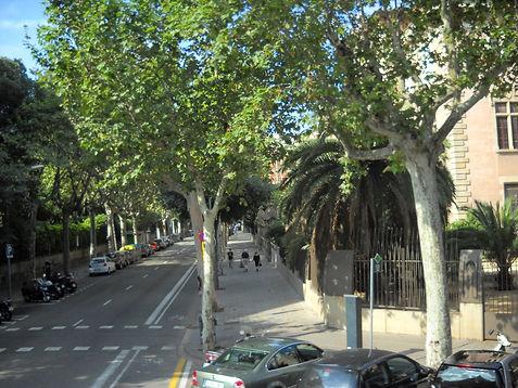 Spain Zoe pix 057.jpg