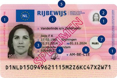 Türk Ehliyetini Hollanda Ehliyeti ile Değiştirmek