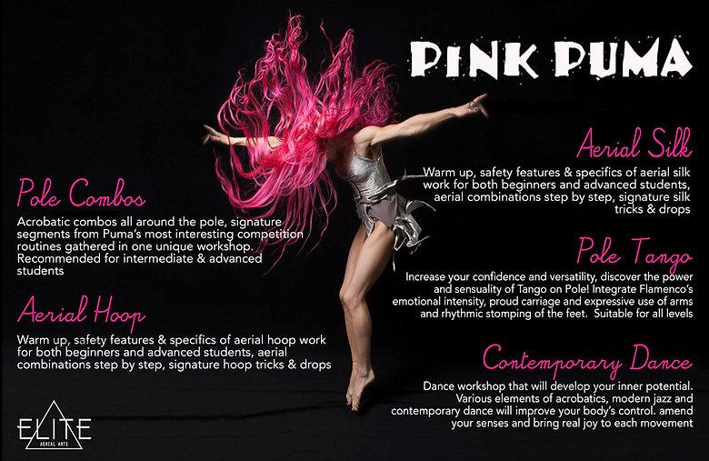 Pink Puma Poster.jpg