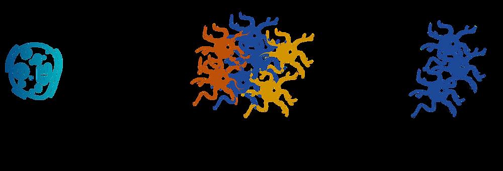 Protocole simplifié de différenciation et de purification de neurones dopaminergiques progéniteurs utilisés dans ce nouveau traitement pour la maladie de Parkinson