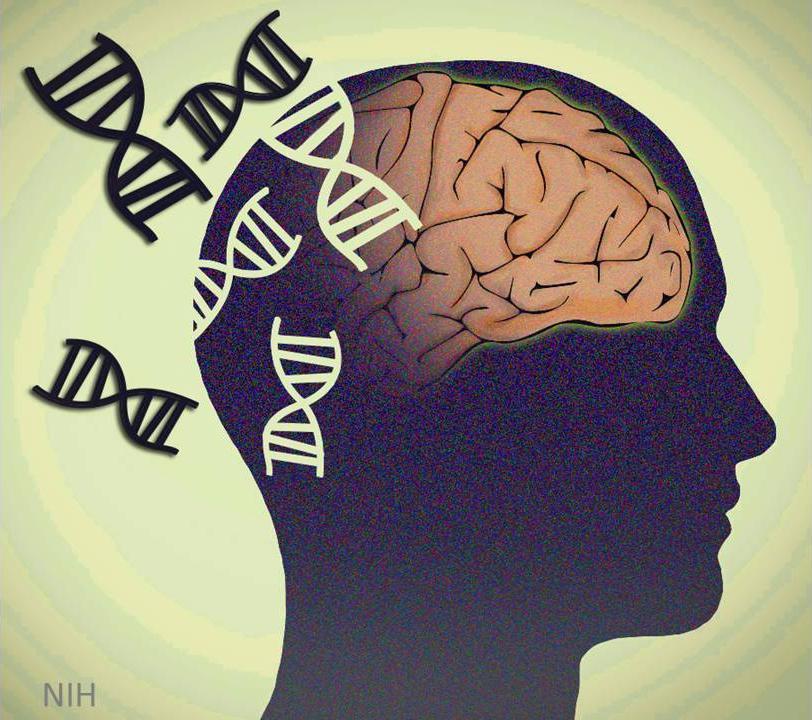 La thérapie génique dans la maladie de Parkinson