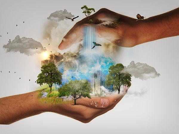 nature-conservation-480985.jpg