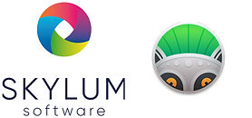 Skylum Software Logo.jpg