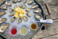 Bodega Bay Oysters 1 small.jpeg