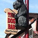 Dog Bar.jpg