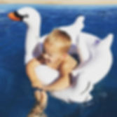 Giant Swan Inflatable Pool Float