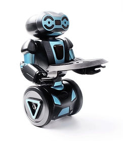 Humanoid Self Balancing RC Smart Robot with Serving Tray