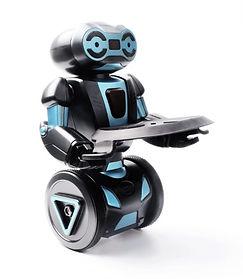 Humanoid Self Balancing RC Smart Robot with Serving Tray