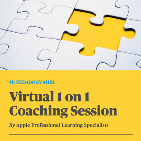 Virtual 1:1 Coaching Session for Educators