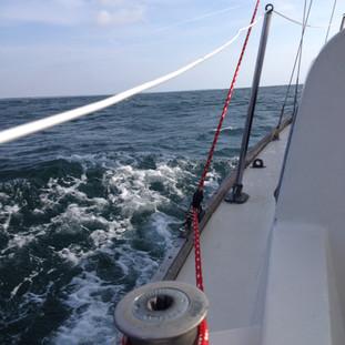BLUE BAYOU Making Waves