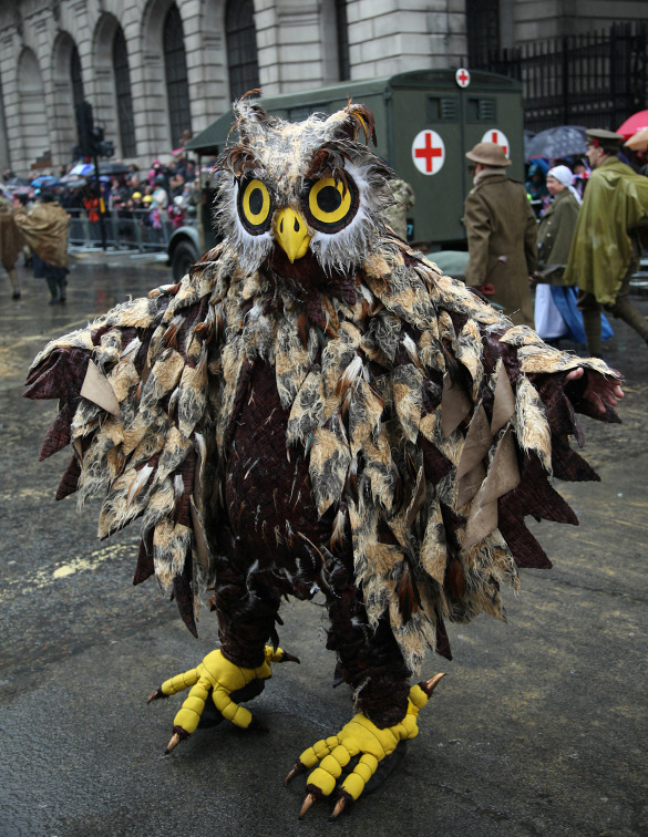 135 Owl at Lord Mayor's Show