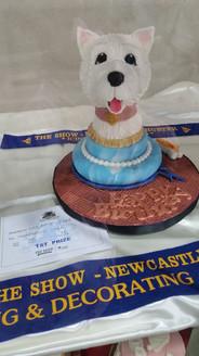 Newcastle Show