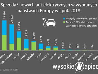"""W UE w pół roku sprzedało się 143 tys. """"elektryków"""". Polski rząd kupił... zero"""
