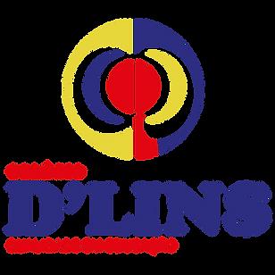 LOGO D LINS PEQUENO COLORIDO_Prancheta 1