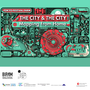 The City & The City: Mapping from Home
