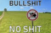 bullshit no shit preview.png