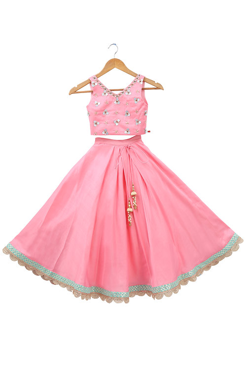 Pink Embroidered Blouse and Skirt