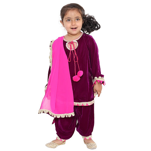 Purple Pink Embroidered Salwar