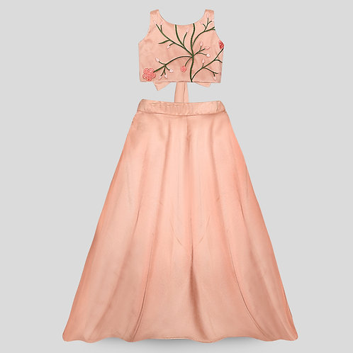 Peach Embroidered Crop & Tafetta Skirt With Ruffles