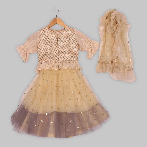 Light  Beige Choli Shaded Lehenga With Dupion