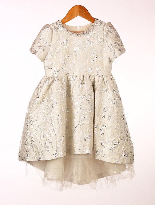 Silver Silk High Low Dress
