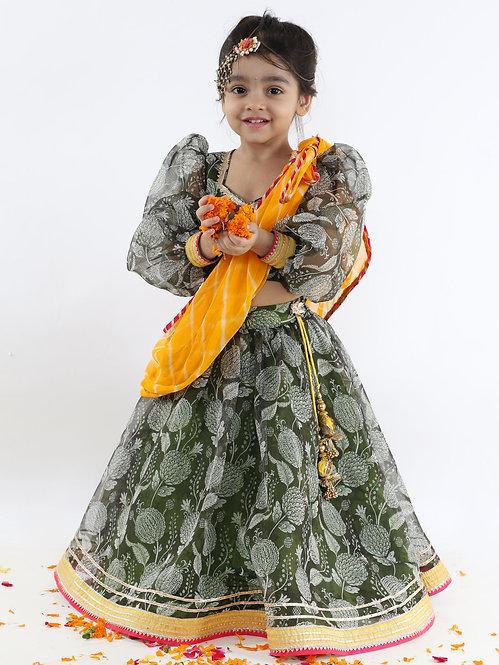 Green Printed Organza Blouse with Lehnga And Lehariya Dupatta