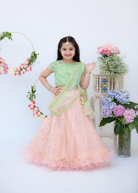 RS-Green Embroidery Choli with Peach Boti Lehenga