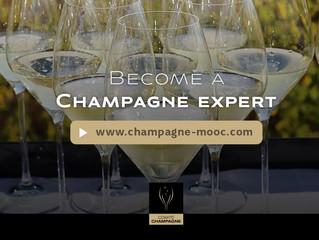Стань экспертом по винам Шампани!