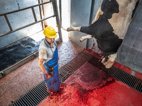7 reasons why no one wants to work in the meat industry