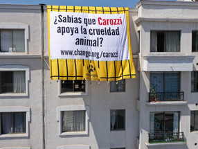 Sinergia Animal extends giant canvas in buildings as part of the campaign towards Carozzi