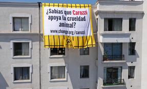 La ONG Sinergia Animal extiende lienzo gigante en edificios como parte de campaña hacia Carozzi