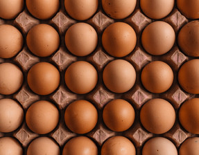 9 reasons why we should not eat eggs