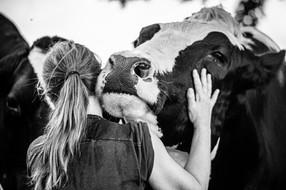 6 cosas que pasarían si el mundo fuera vegano