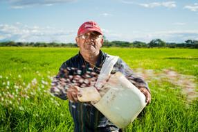 Cambio a una dieta basada en plantas generaría 19 millones de empleos en América Latina y el Caribe