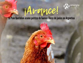 ¡Avance! Le Pain Quotidien asume política de huevos libres de jaulas en Argentina