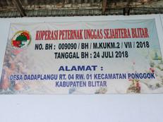 indonesia-33-of-38jpg