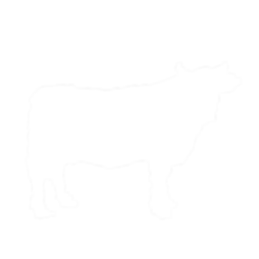 dairy-illustrations-05.png