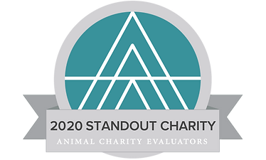2020_standout charity vertical.png