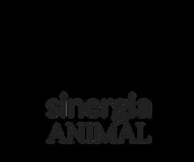 Cópia de sinergia (2).png